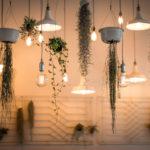 lights-1867437_